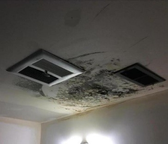 More mold damage to ceiling