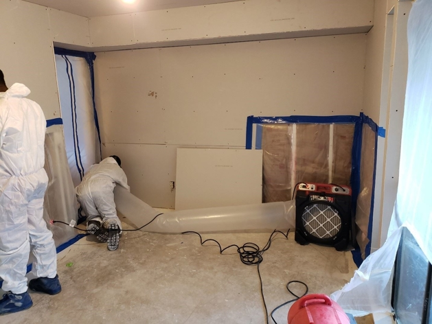 Mold remediation team - Service Team of Professionals Forth Worth South