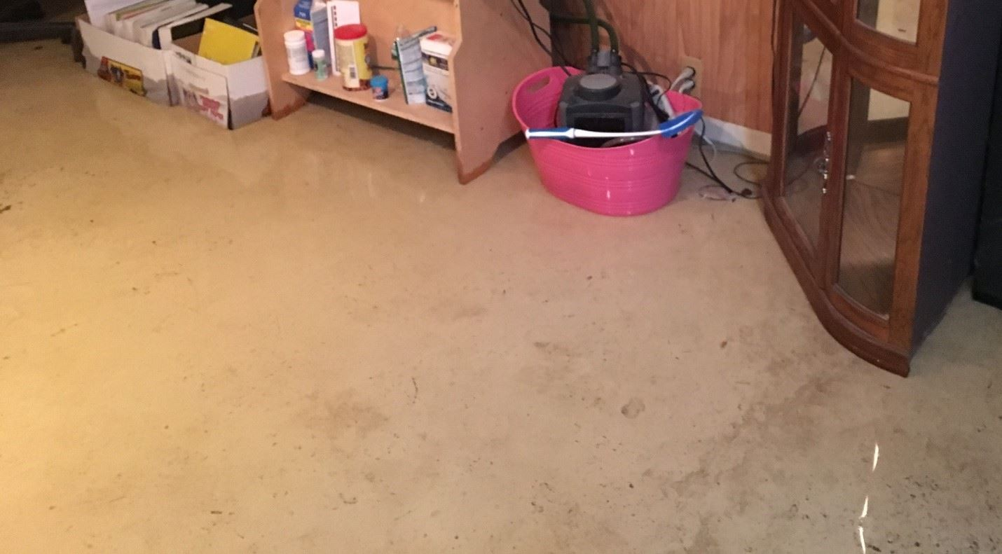 Floor with Water Damage