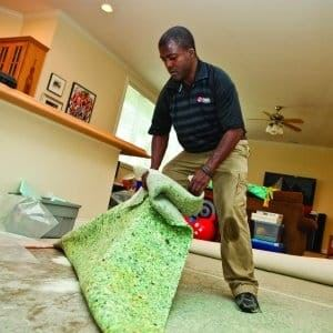 Man Pulling Up Carpet